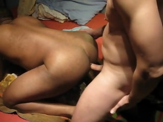 White Bull breeding Black Buns 2